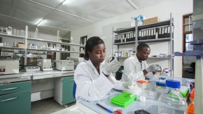 GCE Round 26 Malaria Surveillance Photo